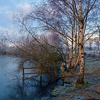 Buy canvas prints of Horseshoe Lake in Winter  by Dave Williams
