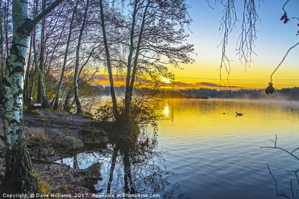 Mist on the lake, Sunrise at Horseshoe Lake Acrylic by Dave Williams