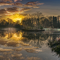 Buy canvas prints of A Frosty Sunrise by Dave Williams