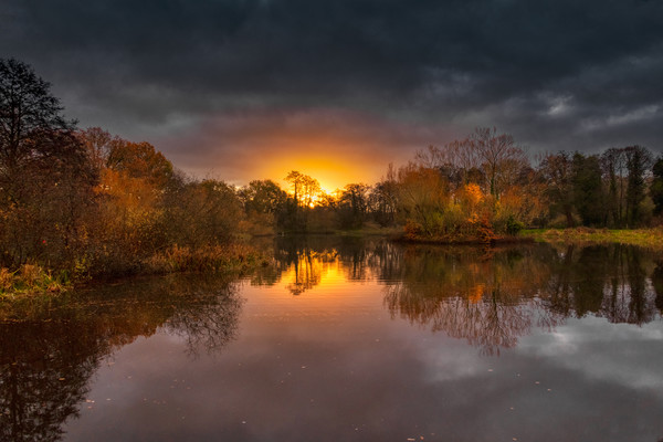 Dramatic Sunrise Acrylic by Dave Williams
