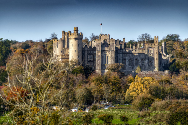 Arundel Castle, West Sussex Framed Mounted Print by Dave Williams