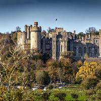 Buy canvas prints of Arundel Castle, West Sussex by Dave Williams