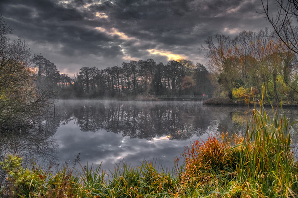 Grey and Misty Morning Canvas Print by Dave Williams