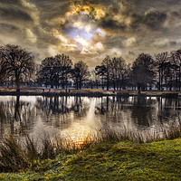 Buy canvas prints of Sunrise at Bushy Park by Dave Williams