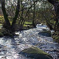 Buy canvas prints of Padley Gorge, Peak District, England by Hazel Wright
