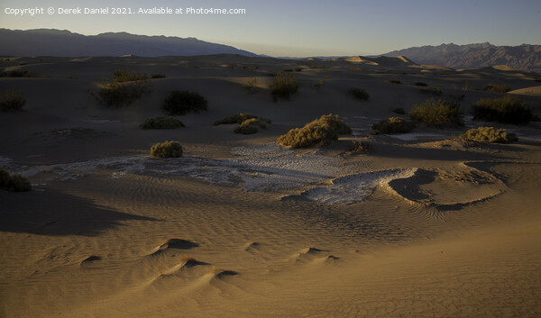 Mesquite Sand Dunes, Stovepipe Wells, Death Valley Canvas Print by Derek Daniel