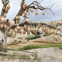 Buy canvas prints of Tree Of Wishes with clay pots in Cappadocia. by Sergii Petruk