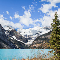 Buy canvas prints of Lake Louise Banff Canada by David Belcher