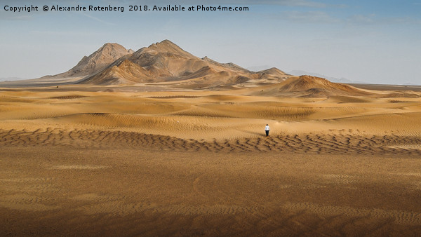Lost in the Desert Canvas print by Alexandre Rotenberg
