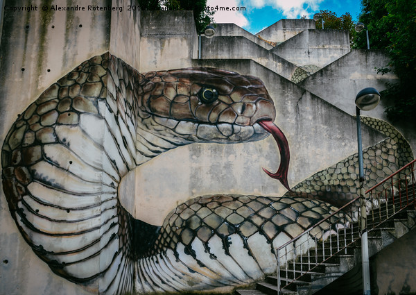 Snake or cobra street art Canvas print by Alexandre Rotenberg