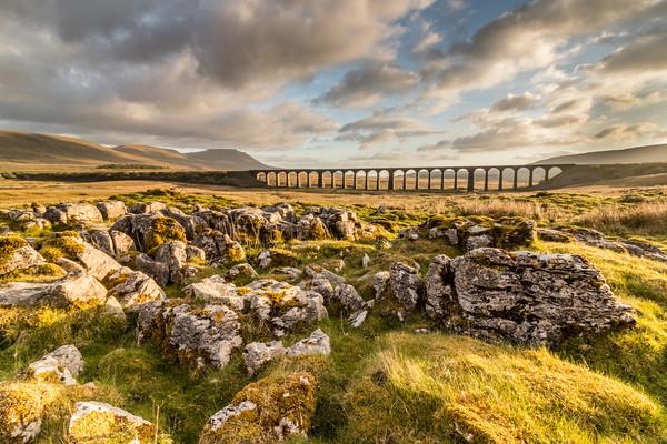 Ribblehead Viaduct  Canvas print by Tony Keogh