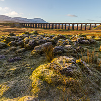 Buy canvas prints of Ribblehead Viaduct  by Tony Keogh