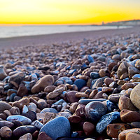 Buy canvas prints of Seashell amongst the pebbles by Richard May