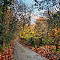 Buy canvas prints of Autumn on the Weald by Richard May