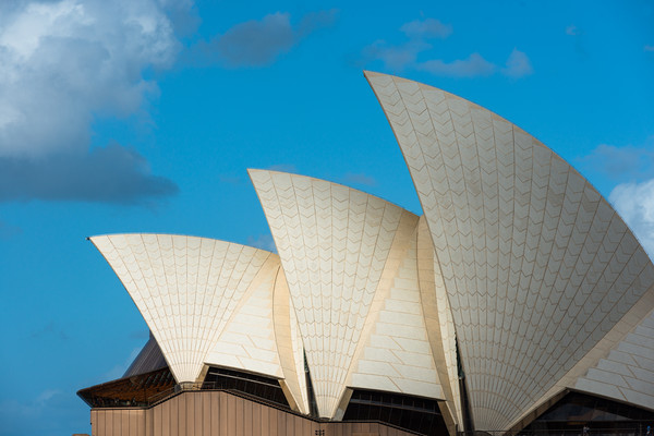 Sydney Opera House sails, Sydney, New South Wales, Canvas print by Andrew Michael