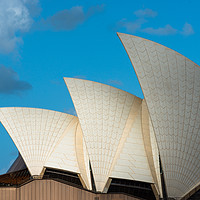 Buy canvas prints of Sydney Opera House sails, Sydney, New South Wales, by Andrew Michael