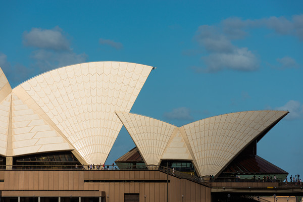 Sydney Opera house sails. Canvas print by Andrew Michael