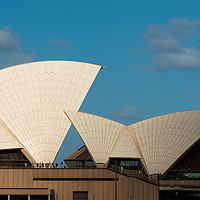 Buy canvas prints of Sydney Opera house sails. by Andrew Michael