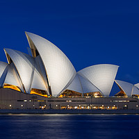 Buy canvas prints of Sydney Opera House after dark. by Andrew Michael