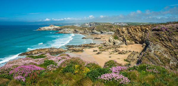 Newquay coast Canvas Print by Andrew Michael