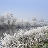 Buy canvas prints of Walk along a scenic river Severn by Andrew Michael