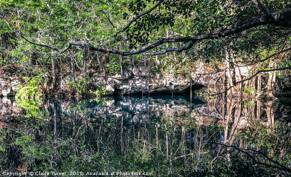 Cenote Angelita Canvas print by Claire Turner