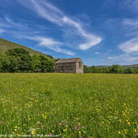 Buy canvas prints of Barn In The Meadows by Tom Holmes