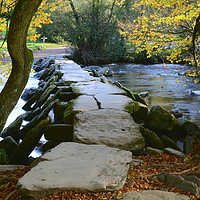 Buy canvas prints of Tarr Steps by David Neighbour