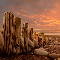 Buy canvas prints of Weathered Groynes by David Neighbour