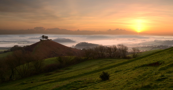Misty Morning at Colmer's Hill Canvas print by David Neighbour