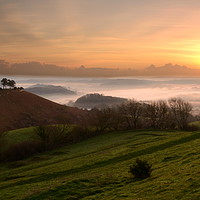 Buy canvas prints of Misty Morning at Colmer's Hill by David Neighbour