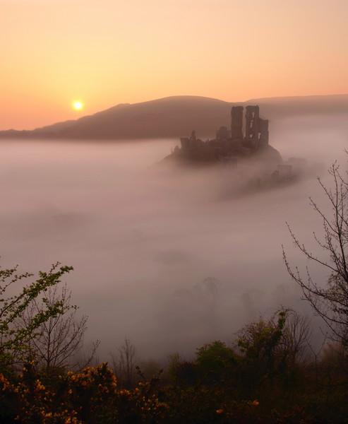 Serene Sunrise at Corfe Castle Canvas print by David Neighbour