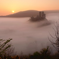 Buy canvas prints of Serene Sunrise at Corfe Castle by David Neighbour