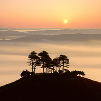 Buy canvas prints of Pine Tree Island by David Neighbour