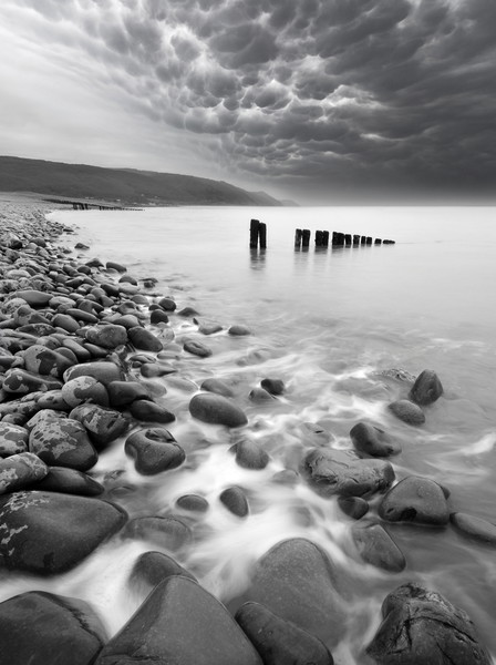 Bossington Groynes Mono Canvas Print by David Neighbour