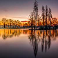 Buy canvas prints of Pontefract Park Lake, West Yorkshire, UK by Tim Hill