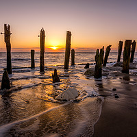 Buy canvas prints of Spurn Point Sunrise with Wooden Groynes Seascape by Tim Hill