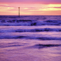 Buy canvas prints of Filey Beach Pink Sunrise by Tim Hill