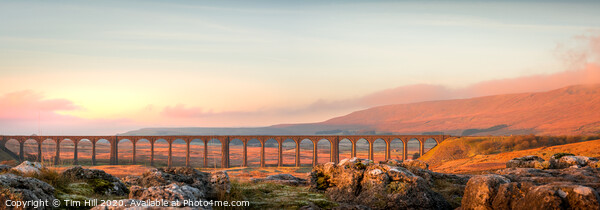 Ribblehead Viaduct Yorkshire Dales  Framed Print by Tim Hill
