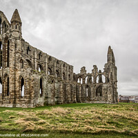 Buy canvas prints of Whitby Abbey by Tim Hill