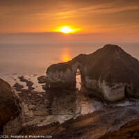 Buy canvas prints of The Drinking Dinosaur, Flamborough Head by Tim Hill