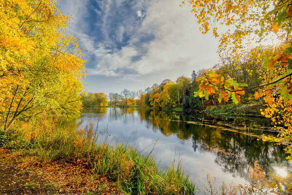 Wakefield Parkland lake in Autumn Canvas Print by Tim Hill