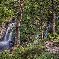 Buy canvas prints of The Falls of Arklet by Douglas Milne