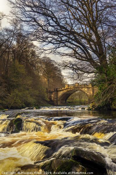 The Nasmyth Bridge and River Almond Canvas print by Douglas Milne