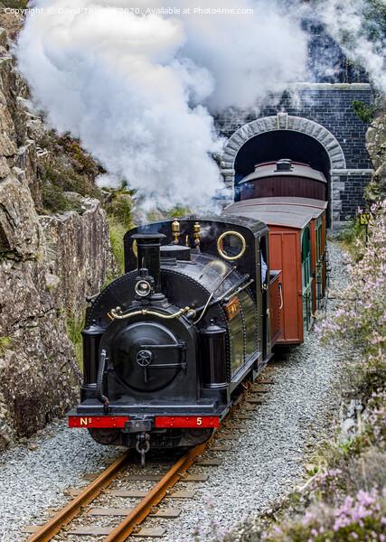 Ffestiniog Railway locomotive, Welsh Pony, exits Moelwyn Tunnel. Acrylic by David Thurlow