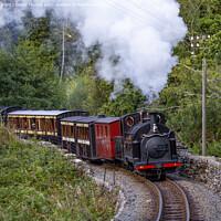 Buy canvas prints of Ffestiniog railway locomotive, Welsh Pony, heads towards Tanybwlch by David Thurlow