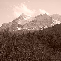 Buy canvas prints of Black Cuillins and trees by J N MacInnes