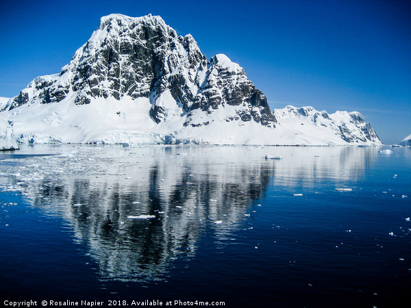 Antarctic mountain reflections Framed Print by Rosaline Napier