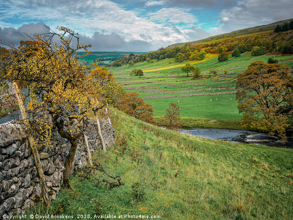 Autumn Afternoon in Wharfedale Canvas print by David Brookens