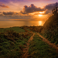 Buy canvas prints of Morning Path to the Sea by David Brookens